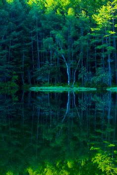 "lifeisverybeautiful: "" Mishaka pond, Nagano, Japan via GANREF 静寂の終わり """
