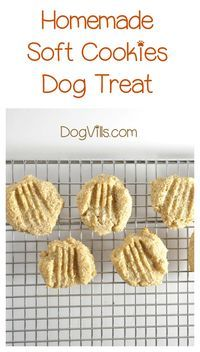 Soft Doggie Cookies For Older Dogs With Allergies Recipe Dog