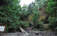 苔の洞門 支笏湖洞爺国立公園|千歳市支寒内|42.716494, 141.318739|