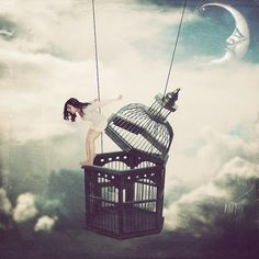If a bird with healthy wings is locked in a cage long enough, she will eventually doubt her ability to fly. Creative Photography, Art Photography, The Caged Bird Sings, Bird Cages, Art Drawings Sketches, Bird Art, Belle Photo, Cute Wallpapers, Les Oeuvres