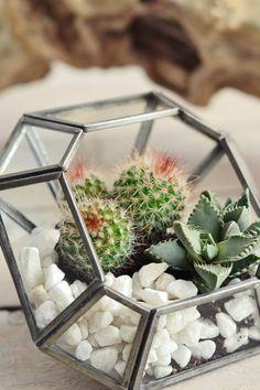 Zinc terrarium /candle holder:square