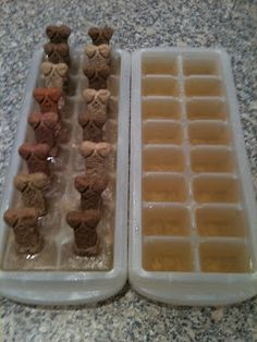 http://www.lifeinmomma-tone.com/2011/07/pupsicles.html  Use chicken or beef broth, freeze it with a bone in it - once its frozen, put the bone down into another tray & let that freeze... broth cubes on both sides with a bone in the middle.