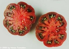 Purple Calabash Aztec heirloom tomato 25 seeds by SmartSeeds