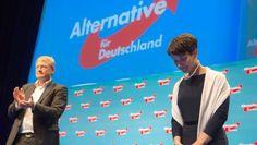 AfD-Politiker tagen Wie geht es weiter nach dem Bruch? Keine vier Monate nach der Landtagswahl in Baden-Württemberg hat sich die AfD-Fraktion de facto zerlegt. Frauke Petry greift ein und spricht von Rettung, ihr Co-Vorsitzender Meuthen widerspricht. 06.07.2016