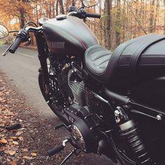 Harley Davidson roadster 1200 by ChrisGodfrey with bikebikervehiclemachinemotorbikemotorcyclisttransportation system