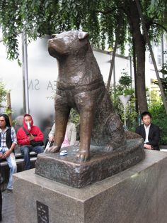 Another view of the Hachiko statue at the entrance to JR (Japan Railways) Shibuya Station...a popular meeting spot for friends and dates...