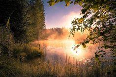 "Featured artist: @sonja_ihalainen - ""Good morning everyone "" - Gofinland.fi @Gofinland_fi"