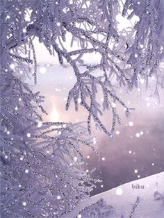 ❄️ Winter Purple ❄️ / snowflakes gif