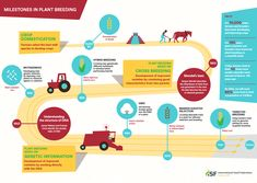 What are GMOs? Are GMOs safe? Why do farmers grow GMO crops? We know there are a lot of questions regarding GMOs, Genetically Modified Organisms. Let's start with the basics. What Are GMOs? Ag Day, Plant Breeding, Farmer, Things To Come, Plants, Saving Seeds, Harvest Moon, Chart, Traditional