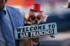 San Francisco vacation basics, things you need to know, things to do in advance and what to bring