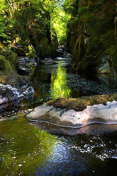 Fairy Glen near Betws y Coed Conwy Wales The Beautiful Country, Beautiful World, Beautiful Places, Fairy Glen, Climbing Hydrangea, Romantic Breaks, Snowdonia, England And Scotland, London Travel