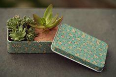 Floral | os mini mundos