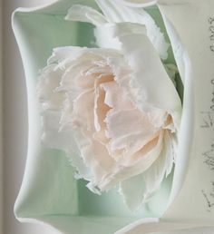 fenella elms stained porcelain with glaze