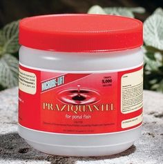Praziquantel 50gm by Eco Labs. Save 17 Off!. $66.52. Treatment of external & liver flukes, internal parasites & worms in pond fish. This 50 gram jar treats 5,000 gallons of pond water. Prazi is extremely effective for the treatment of external flukes, liver flukes, internal parasites & internal worms in koi, goldfish & tropical fish. It is so gentle it does NOT require water changes after treatment.