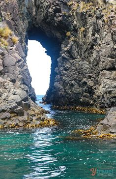 Explore sea caves and rugged coastline on a Bruny Island Cruise in Tasmania - Australia