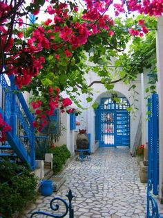 Lovely blue and white courtyard with magnets bougainvillea. #piasajismojardines
