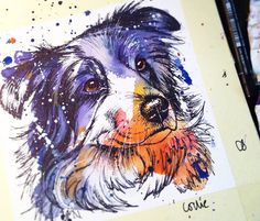 Border Collie watercolor painting by Tori Ratcliffe Art - Tap the pin for the most adorable pawtastic fur baby apparel! You'll love the dog clothes and cat clothes! Animal Paintings, Animal Drawings, Art Drawings, Watercolor Animals, Watercolor Paintings, Border Collie Art, Kunst Inspo, Desenho Tattoo, Artist Gallery