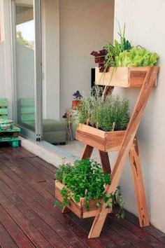 Gorgeous 5 Steps to a Profitable House Backyard - Suculentas, cactos, vasos, jardins e hortas internasWhen first beginning a house backyard, there are several elements you could think about. Don't choose properly shaded areas - This must be execut Diy Herb Garden, Garden Planters, Herbs Garden, Balcony Garden, Herb Gardening, Herb Garden Pallet, Herb Garden Design, Diy Planters Outdoor, Wood Pallet Planters