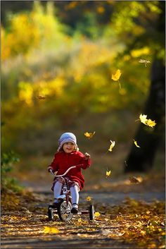 autumn, bicycle, child, girl, happiness, happy