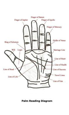 Learn basics of palmistry and how the chart is interpreted with this easy to understand palm-reading guide which contains information to help interpret the secrets that lie hidden within the palms of your hands. Wiccan, Magick, Witchcraft, Palm Reading Charts, Palm Reading Right Hand, Basic Palm Reading, Palm Reading Lines, Pseudo Science, Signo Libra