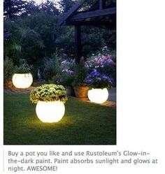 Definitely want to do this!!