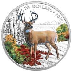 RCM New Release: 2018 1 oz Pure Silver Coloured Coin: Majestic Wildlife: Wandering White-tailed Deer - Coin Community Forum Wilhelm Ii, Gold Bullion Bars, Buy Gold And Silver, Canadian Coins, Gold Stock, Coins For Sale, World Coins, Canadian Artists, Coin Collecting