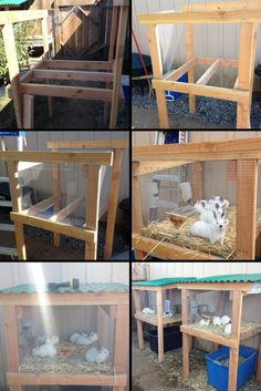 As the baby rabbits grow bigger, new cages must be built. Rabbit Pen, Rabbit Farm, House Rabbit, Rabbit Cage Diy, Show Rabbits, Meat Rabbits, Raising Rabbits, Rabbit Cages Outdoor, Outdoor Rabbit Hutch