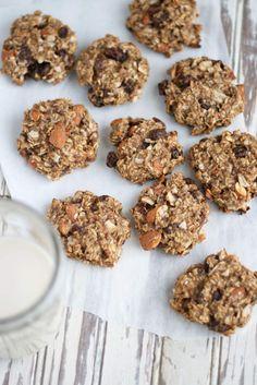 Oatmeal Raisin Breakfast Cookies | VeguKate