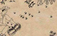 #Apicultura #México :  En #riesgo apicultura tradicional serrana por #minería, alerta #fundacióneuropea http://www.apicultors.com/es/noticias-del-sector-apicola/327-mexic-a-risc-apicultura-tradicional-serrana-per-mineria-alerta-fundacio-europea.html #agricultura #abejas #miel #abelles #mel #mining #beekeeping #agriculture #bees #honey #minière #apiculture #agriculture #abeilles #miel