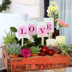 """Here's a vintage flower arrangement that's both unique and simple to assemble. A weathered soda crate, with its many compartments, allows you to create a modular arrangement with various elements, like succulents, cut flowers, candles, and even seed packets spelling out """"L-O-V-E."""" Not only perfect for Valentine's Day or Mother's Day, it's..."""