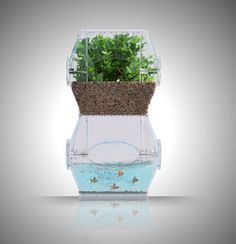 An Indoor Garden for Small Urban Spaces | Environment on GOOD