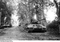 """1944, France, Le parc du Chateau Canteloup, Des chars allemands, dont un """"Königstiger"""", se cachent sous les arbres pour se protéger de la chasse alliée"""