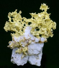 自然金 GOLD on QUARTZ 自然金,产自美国(Frenchman's Adit, Hope Claim, Placer County, California, U.S.A),15 cm 高。Jack Halpern 收藏