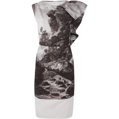 Dries Van Noten Daila Jungle Print Cotton Dress ❤ liked on Polyvore