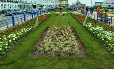 Formal flower gardens on Eastbourne Sussex England seafront. They are all down the front
