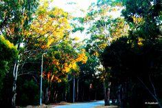 Mediouna Road (Tanger)