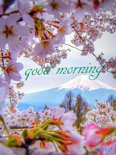Have a joyful day! Thank you sweet Pamela. Good Morning Cards, Good Morning Flowers, Good Morning Picture, Good Morning Good Night, Morning Pictures, Good Morning Wishes, Good Morning Images, Morning Love Quotes, Morning Greetings Quotes