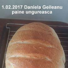 Paine de casa traditionala ungureasca | Savori Urbane Hamburger, Bread, Cabana, Food, Bread Baking, Kuchen, Essen, Brot, Cabanas