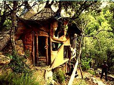 Habitat alternatif :: habitat intégré à l'environnement