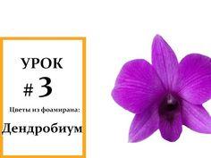 Цветы из фоамирана – орхидея. Видео мастер-класс - YouTube