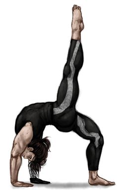 Bucky doing yoga by gryphonphoenix