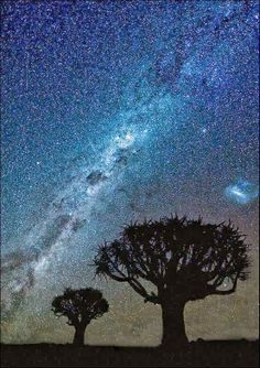 The Milky Way in its full glory. Seen from Namibia