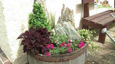 Tröge, Kübel attraktiv bepflanzen