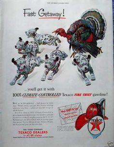 Texaco Gas Turkey Chasing Dalmatian Puppies (1953)
