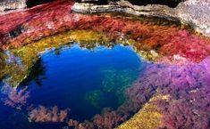 Gyönyörű a világ legszínesebb folyója – képek – Termalfurdo.hu