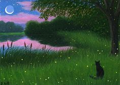"""""""Evening at Firefly Pond"""""""