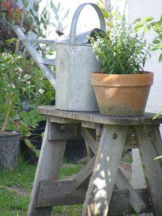 Old Rustic Bench.with vintage watering can & mossy clay pot. Garden Tools, Water Garden, Watering, Patio Garden, Herb Farm, Container Gardening, Watering Can, Cottage Garden, Garden Pots