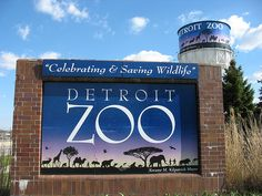 My son and I love to visit the Detroit Zoo in Royal Oak, MI.  They have the coolest Arctic Ring of Life exhibit where you can walk under a glass enclosure with swimming polar bears and seals.  And a new Outback exhibit where you can walk in with the kangaroos!  And don't forget the family train!  Loads of fun at the Zoo!