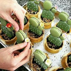Have any green macarons on hand? Try out these adorable cacti macaron tarts by…