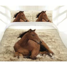 Horse Beautiful Babe Single, Double Queen or King Size Doona Quilt cover set available at Kids Mega Mart online Shop Australia www.kidsmegamart.com.au